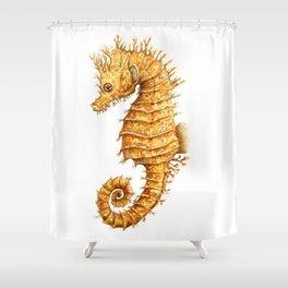 Sea horse, Horse of the seas, Seahorse beauty Shower Curtain
