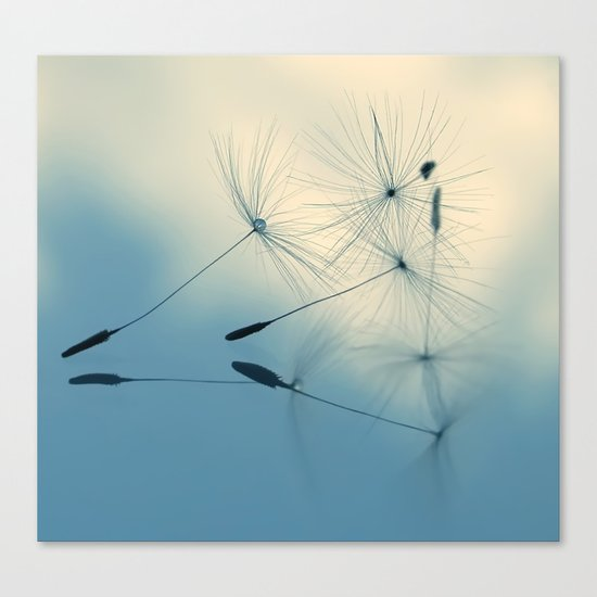 dandelion - cloud nine Canvas Print