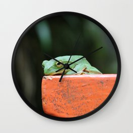 Green Frog on Lamp Post Wall Clock