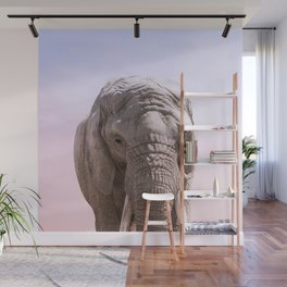 Elephant Photography and Sunset | Wildlife Art | African Wall Mural