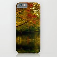 Fall Afternoon iPhone 6s Slim Case