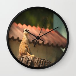 Meerkat Funny Observer #decor #society6 Wall Clock