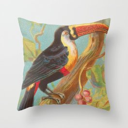 Toco Toucan Birds of the Tropics Series by A&G Throw Pillow