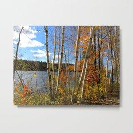 Autumn 3 Metal Print