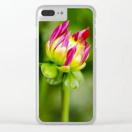 Karma Thalia Dahlia In Bloom Clear iPhone Case