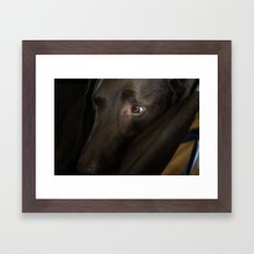 My Friend Chocolate Lab Framed Art Print