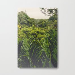 Jungle Waterfall II Metal Print
