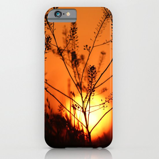 Goodnight Sun iPhone & iPod Case
