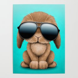 Cute Baby Bunny Wearing Sunglasses Poster