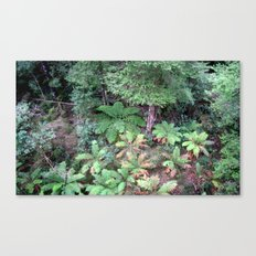 From 30 metres Above Canvas Print
