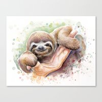 sloth Canvas Prints featuring Sloth by Olechka