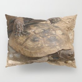 Slow Love - Tortoises Pillow Sham