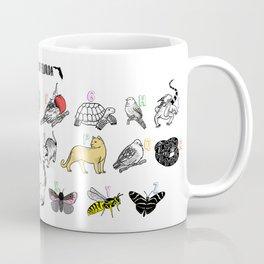 A to Z Animals of Florida Coffee Mug