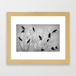 A Murder of Crows Framed Art Print