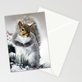 Winter Squirrel Stationery Cards
