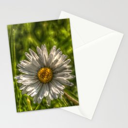 Solitaire Daisy 15 Stationery Cards