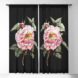 Wilting Pink Rose Watercolor on Charcoal Black Blackout Curtain