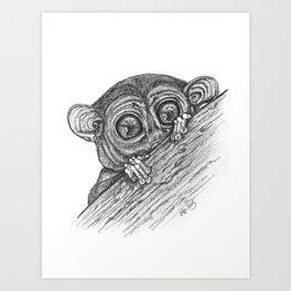 Bushbaby Art Print