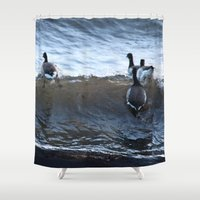 ducks Shower Curtains featuring Ducks by Alex Dodds