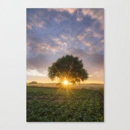 The tree of life - Belgium Canvas Print