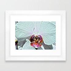 sir-reel Framed Art Print