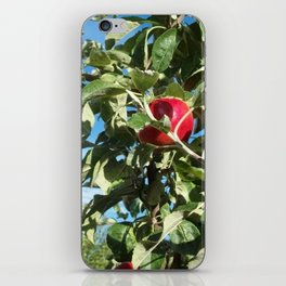 Apples to Apples iPhone Skin