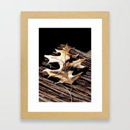Burnished Gold in Winter Framed Art Print