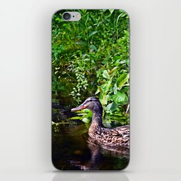 duck reflections iPhone Skin