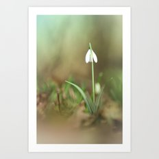 Bathed in a little sunshine Art Print