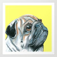 Pug, printed from an original painting by Jiri Bures Art Print