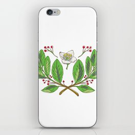 Yerba Mate Flower Leaf and Fruit Drawing iPhone Skin