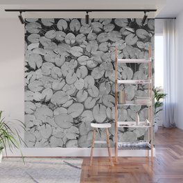 B&W Lily Pads Wall Mural