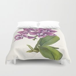 Purple Phalaenopsis Orchid Duvet Cover