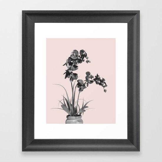 Summer orchid bloom Framed Art Print