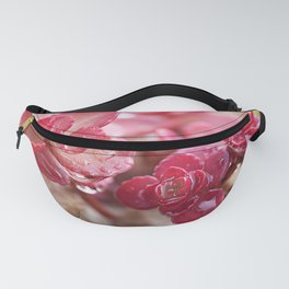 Succulent Garden Cactus Red Flowers Tropical Cacti with drops Fanny Pack