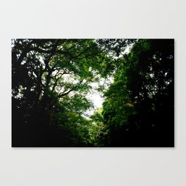 DEEPER THOUGHTS Canvas Print