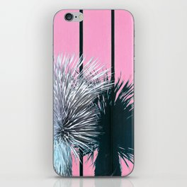 Yucca Plant in Front of Striped Pink Wall iPhone Skin