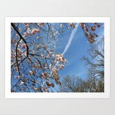 A View Skyward Art Print