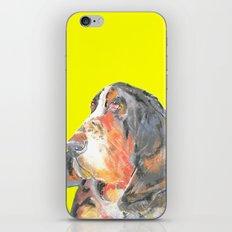 Basset Hound , Jiri Bures original art and design iPhone & iPod Skin