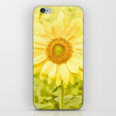 Smiling sunflower iPhone & iPod Skin