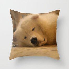 padpad Throw Pillow