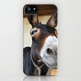 i like you iPhone Case