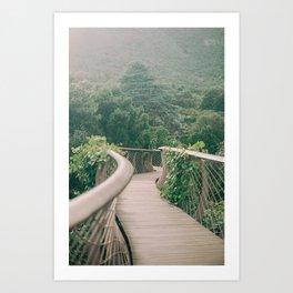Botanical road through Kirstenbosch | Cape town travel photo art photography  Art Print