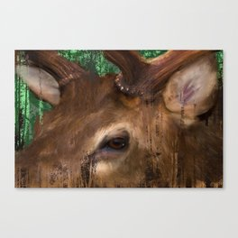 Elk grunge in the trees Canvas Print
