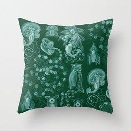 Ernst Haeckel - Siphonophorae Throw Pillow