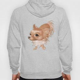 Suspicious Chihuahua Hoody