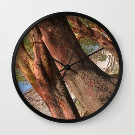 MADRONA TREES REACHING OVER THE BEACH Wall Clock