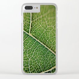 Veins of a leaf Clear iPhone Case