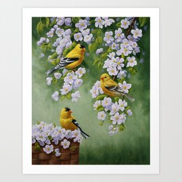 Goldfinches and Spring Apple Blossoms Art Print