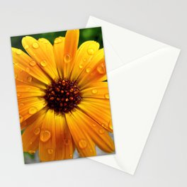 Marigold Stationery Cards